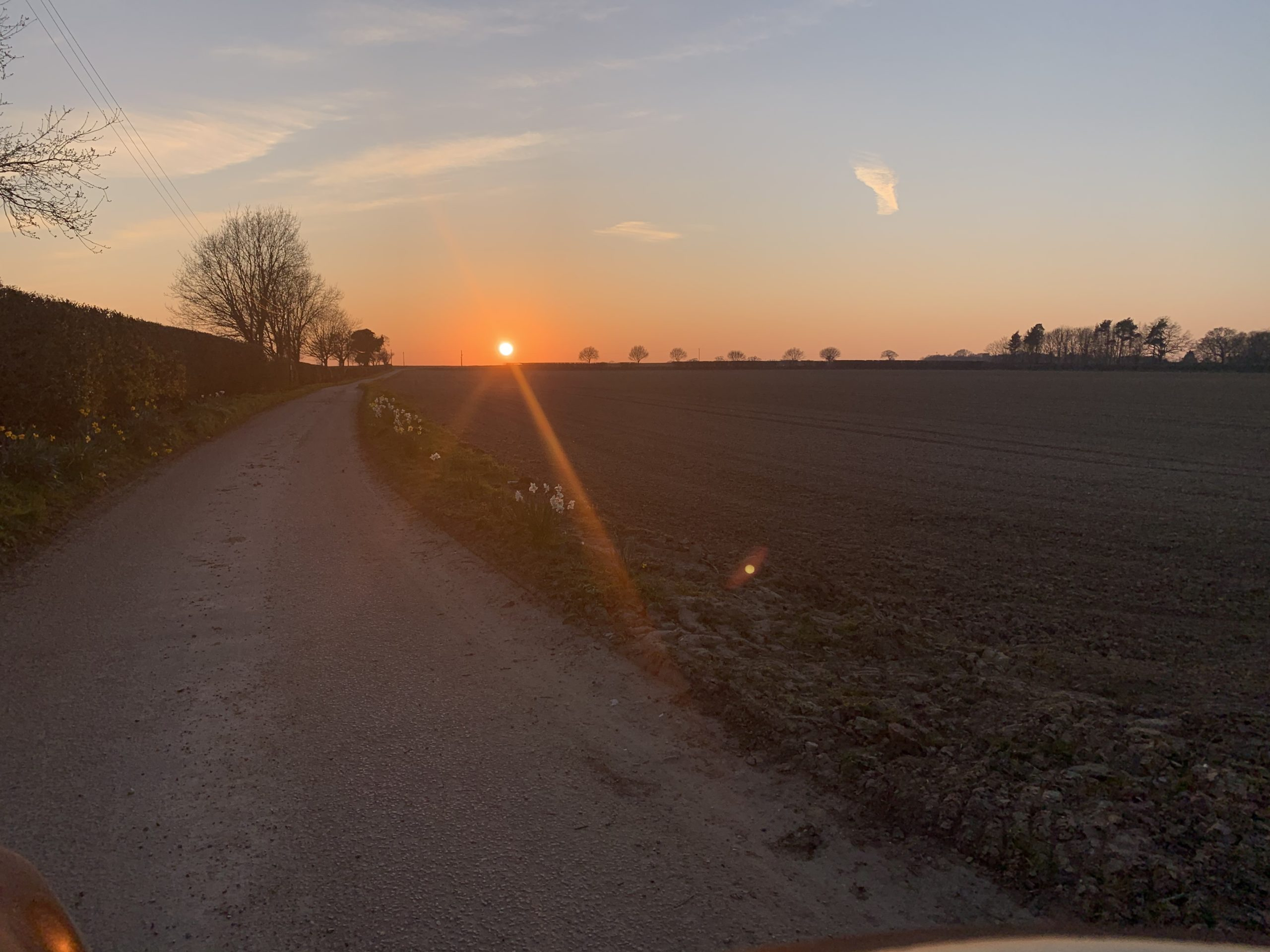 Early Spring Sunset at Morton's Family Farm